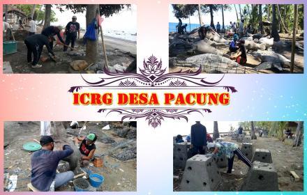 Proyek ICRG Desa Pacung